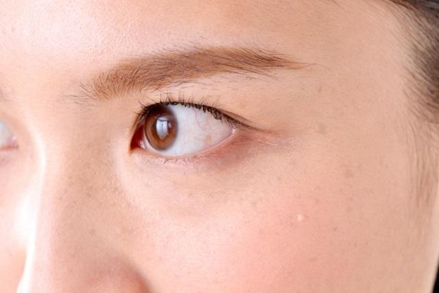 目視の写真